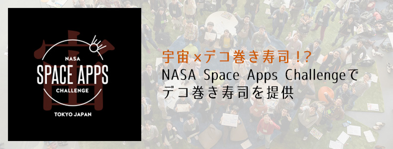 HAKUTO,NASA,デコずし